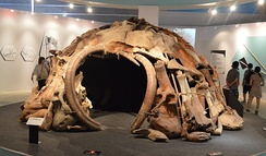 Reconstructed woolly mammoth bone hut, based on finds in Mezhyrich.