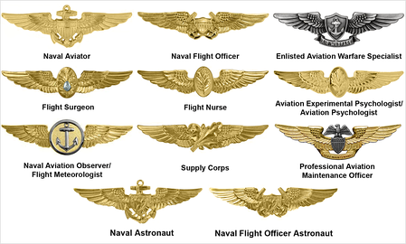 Aviation Warfare insignia