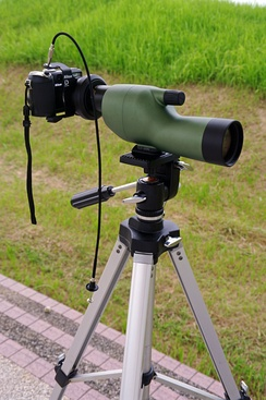 Spotting scope with a digital camera mounted afocally using an adapter.