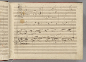 The Beethoven Experience: A manuscript page of Beethoven's Ninth Symphony.