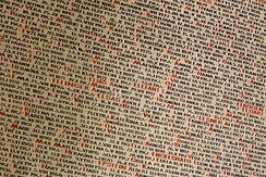 Names of Holocaust victims in the Pinkas Synagogue in Prague