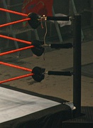 Padded turnbuckles in a wrestling ring connecting ring ropes to post