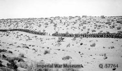 February 1917 Infantry marching on the wire road across the desert between Bir el Mazar and Bardawil