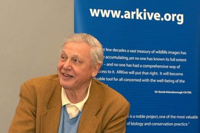 Sir David Attenborough and the ARKive