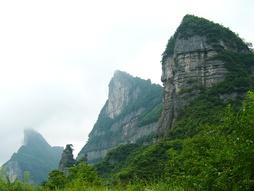 Цзиньфошань — одна из гор Далоушаня, где гинкго живёт до 2500 лет[13][14].