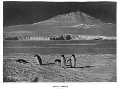 Photograph of Mount Erebus taken by the Terra Nova Expedition