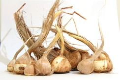 Saffron onions