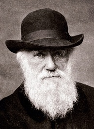 Charles Darwin (1809–1882) explored the expression of emotions in animals.