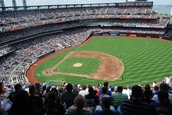 Forms of grass are used to cover baseball fields, like this one in Citi Field, home of the New York Mets.