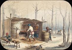 Корнелиус Кригхофф[en], «Производство сахара в Канаде». 1852 год