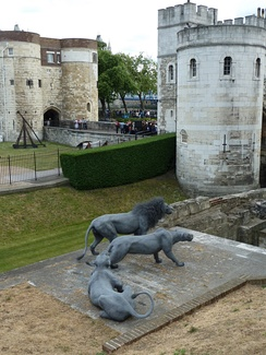 Wire animal sculptures at the tower, Kendra Haste