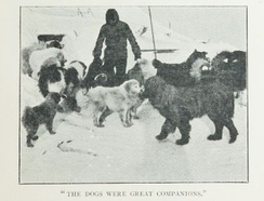 The expedition was the first to use dogs in the Antarctic.