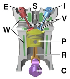 Diagram of a cylinder as found in 4-stroke gasoline engines.:C – crankshaft.E – exhaust camshaft.I – inlet camshaft.P – piston.R – connecting rod.S – spark plug.V – valves. red: exhaust, blue: intake.W – cooling water jacket.gray structure – engine block.