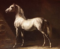 White Arabian Horse, before 1824