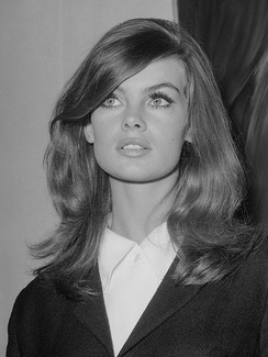 Jean Shrimpton was a model who reflected the ideal of the single girl.