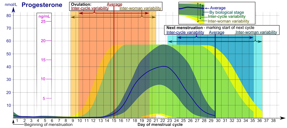 Progesterone levels during the menstrual cycle.[102]  • The ranges denoted By biological stage may be used in closely monitored menstrual cycles in regard to other markers of its biological progression, with the time scale being compressed or stretched to how much faster or slower, respectively, the cycle progresses compared to an average cycle. • The ranges denoted Inter-cycle variability are more appropriate to use in non-monitored cycles with only the beginning of menstruation known, but where the woman accurately knows her average cycle lengths and time of ovulation, and that they are somewhat averagely regular, with the time scale being compressed or stretched to how much a woman's average cycle length is shorter or longer, respectively, than the average of the population. • The ranges denoted Inter-woman variability are more appropriate to use when the average cycle lengths and time of ovulation are unknown, but only the beginning of menstruation is given.