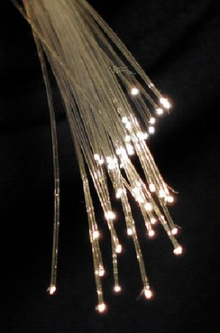 A bundle of optical fibers