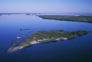 Pelican Island in Florida was the nation's first wildlife refuge, created in 1903