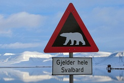 Road sign warning about the presence of polar bears