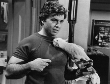 As Baretta with Fred.