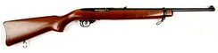 Ruger 10/22 - .22 Long Rifle