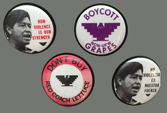 National Farm Workers Association political activism buttons
