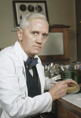 Alexander Fleming. His discovery of penicillin had changed the world of modern medicine by introducing the age of antibiotics.