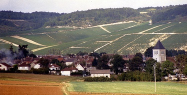 Champagne can only come from the Champagne region of France.