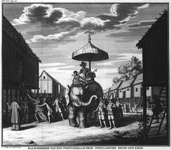 Portuguese ruler of Pegu ridding an Elephant in the 17th century.