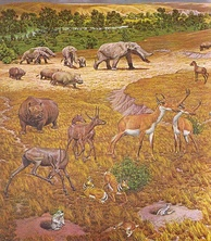 Pliocene mammals of North America