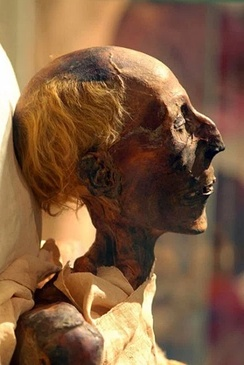 Mummy of Ramesses II, one of the most famous mummies from ancient Egypt