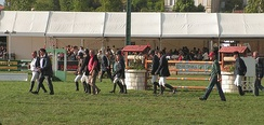 Riders walking a course