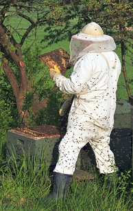 Beekeepers often wear protective clothing, for OHS reasons