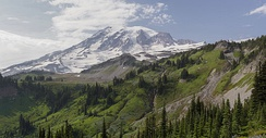 View of the south face of Mount Rainier from the Skyline Trail in Paradise