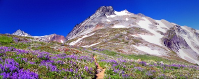 Alpine tundra in the North Cascades of Washington, United States