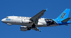Airbus A319 of US Airways wearing Carolina Panthers livery