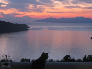 "The Greek poet Homer wrote of ""the child of morning, rose-fingered dawn"" in the Odyssey. Sunrise at Serifos, Greece.  Rose to tie crimson by weight of literary context."