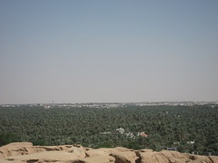 Al-Ahsa Oasis, also known as Al-Hasa Oasis, in Saudi Arabia is the largest oasis in the world
