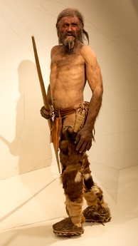 Naturalistic reconstruction of Ötzi – South Tyrol Museum of Archaeology