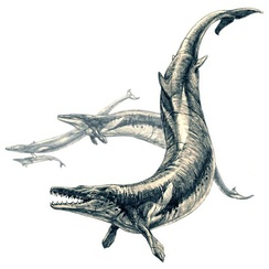Basilosaurus (a whale, despite the name)