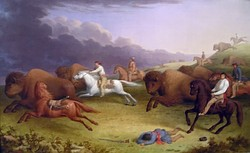 Paul Kane's oil painting Half-Breeds Running Buffalo, depicting a Métis buffalo hunt on the prairies of Dakota in June 1846.