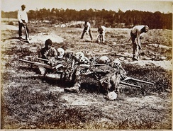 Cold Harbor, Virginia. African Americans collecting bones of soldiers killed in the battle. Photo by John Reekie, April 1865.[89]
