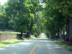 Narrow country roads bounded by stone and wood plank fences are a feature in the Kentucky Bluegrass region.