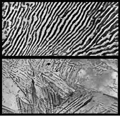 Photomicrographs of steel. Top photo: Annealed (slowly cooled) steel forms a heterogeneous, lamellar microstructure called pearlite, consisting of the phases cementite (light) and ferrite (dark). Bottom photo: Quenched (quickly cooled) steel forms a single phase called martensite, in which the carbon remains trapped within the crystals, creating internal stresses.