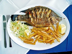 "Redbelly tilapia (Tilapia zillii; ""St. Peter's fish"") served in a Tiberias restaurant"
