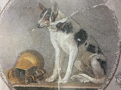 Ptolemaic mosaic of a dog and askos wine vessel from Hellenistic Egypt, dated 200–150 BC, Greco-Roman Museum of Alexandria, Egypt