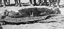 Corpse of Ali Dinar