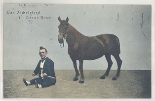 Dwarfism occurs in animals as well as humans; horses can have achondroplastic symptoms, as shown here next to a person with dwarfism.