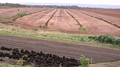 Industrial-milled peat production in a section of the Bog of Allen in the Irish Midlands: The 'turf' in the foreground is machine-produced for domestic use.