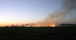 Controlled burning of a field outside of Statesboro, Georgia in preparation for spring planting.